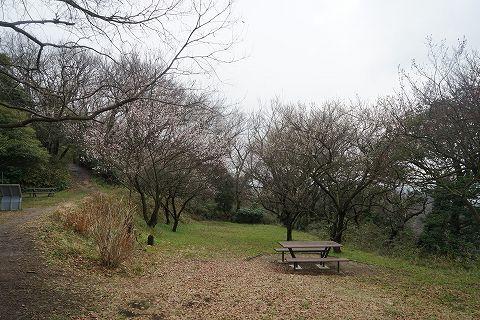 20150307 金沢文庫 28.jpg