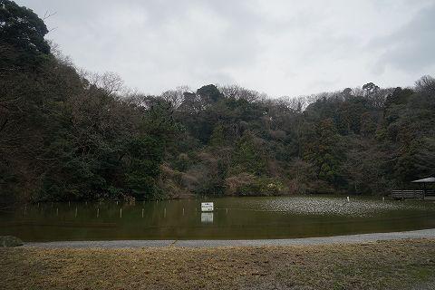 20150307 金沢文庫 39.jpg