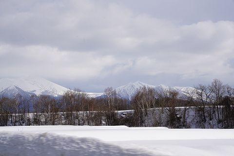 20170319 北海道の旅  54.jpg