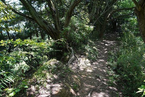 20180428 鎌倉散策 16.jpg