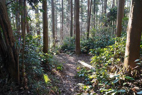 20181221 鎌倉散策 34.jpg