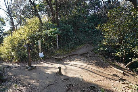 20190113 鎌倉散策 29.jpg