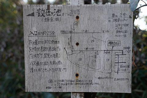 20190113 鎌倉散策 55.jpg