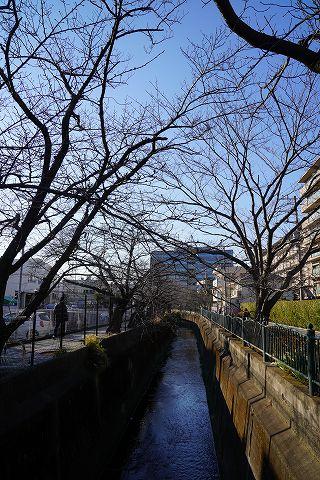 20190113 鎌倉散策 70.jpg
