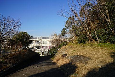 20190119 逗子散策 55.jpg