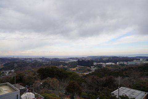 20190126 京急長沢散策 37.jpg
