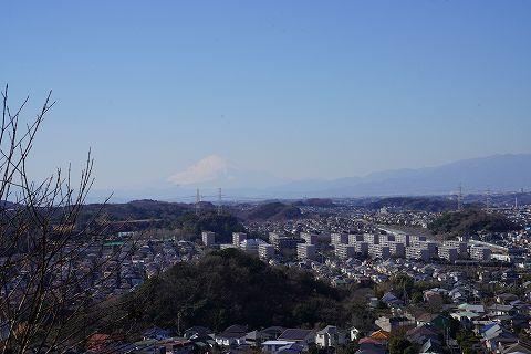 20190202 金沢文庫散策 31.jpg