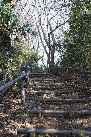 20190202 金沢文庫散策 34.jpg