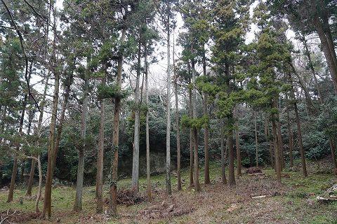 20190209 鎌倉散策 78.jpg