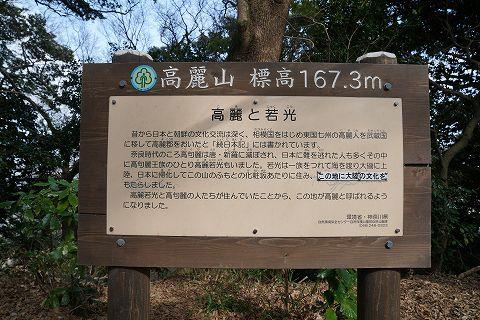 20190210 大磯散策 55.jpg