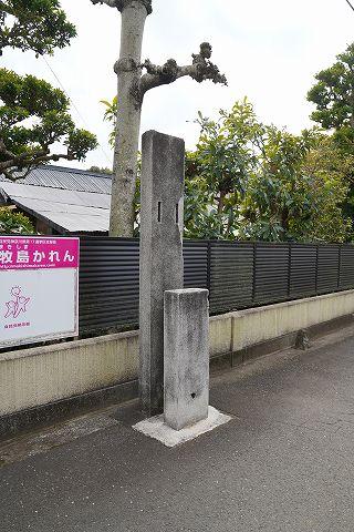 20190216 国府津散策 72.jpg