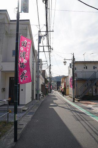 20190302 田浦散策 03.jpg