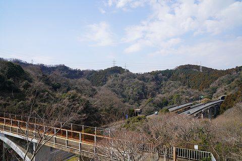 20190302 田浦散策 18.jpg