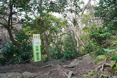 20190302 田浦散策 21.jpg