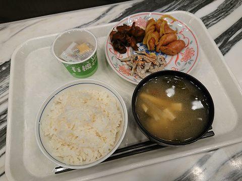 20190310 静岡出張 14.jpg