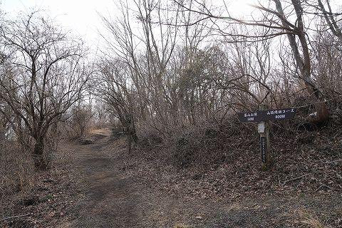 20190316 湯河原散策 60.jpg