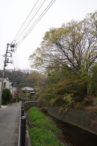 20190330 鎌倉散策 06.jpg