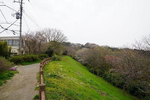 20190330 鎌倉散策 16.jpg