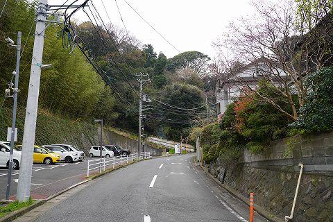 20190330 鎌倉散策 31.jpg
