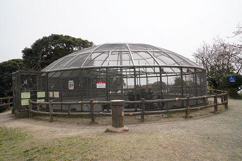 20190330 鎌倉散策 38.jpg
