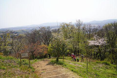 20190406 秦野散策 62.jpg
