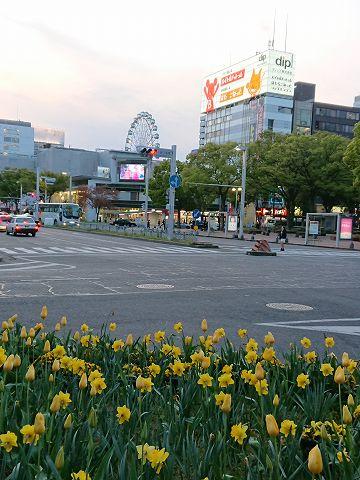 20190409 名古屋出張 13.jpg