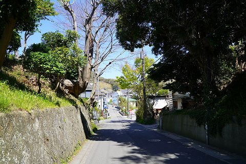20190413 逗子散策 05.jpg